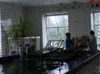 Санаторий Хмельник (Военный ЦВКС) - фото 2