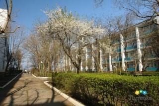 Санаторий Полтава-Крым - фото 25