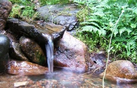Питье минеральных вод, фото 1